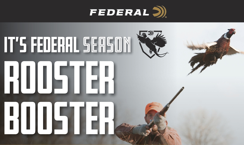 Rebate: Its Federal Season Rooster Booster