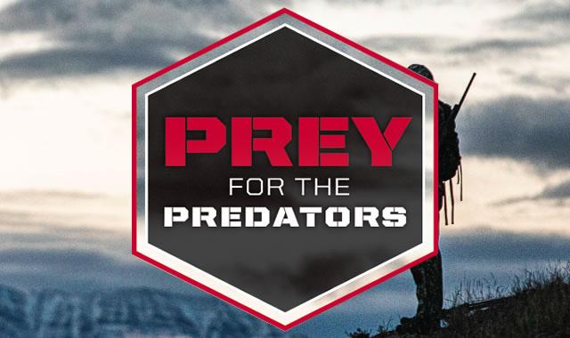 Prey for the Predators
