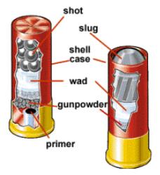 Shotgun Shells Types