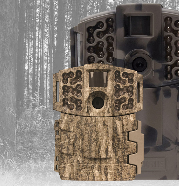 Trail Cameras for Sale