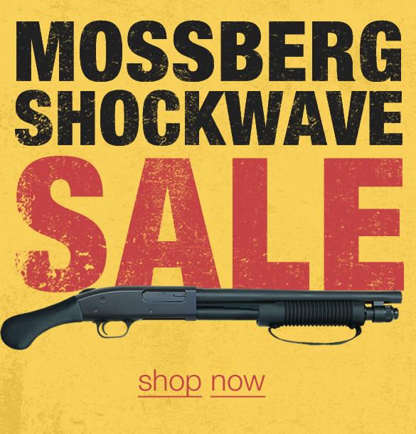 Guns For Sale Online | Sportsman's Outdoor Superstore | Online Gun Store