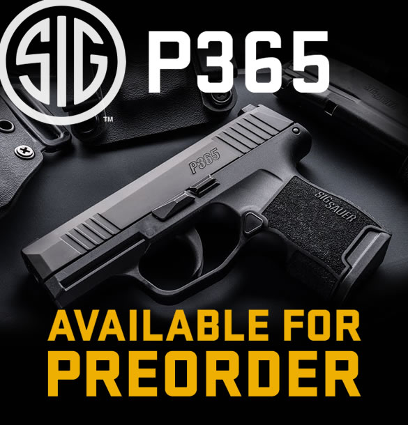 Sig P365 9mm Pistol for Sale