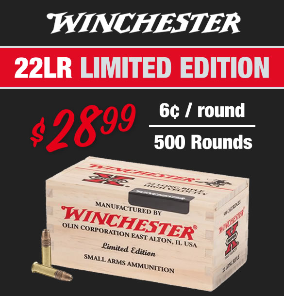 Winchester 22LR Ammo for Sale