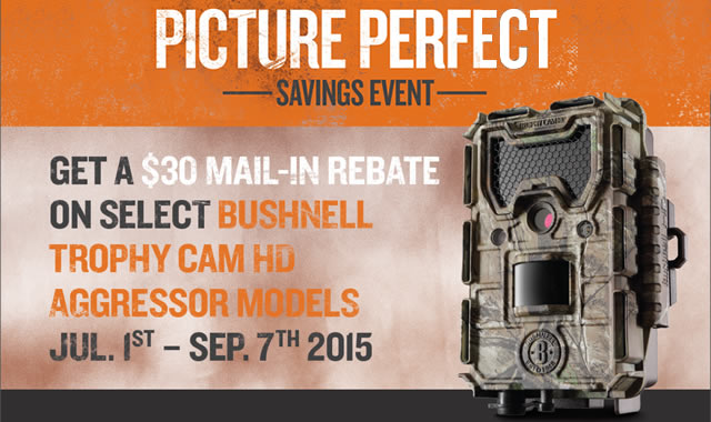 Picture Perfect Savings Event
