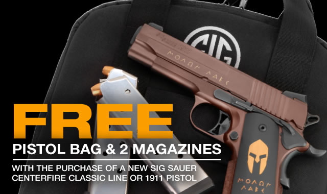 Free Pistol Bag and 2 Magazines