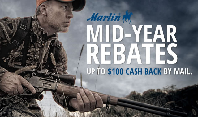Mid Year Rebates Cash Back By Mail