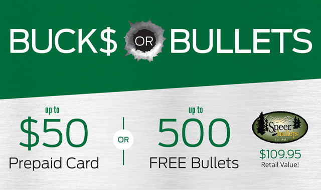 Bucks or Bullets