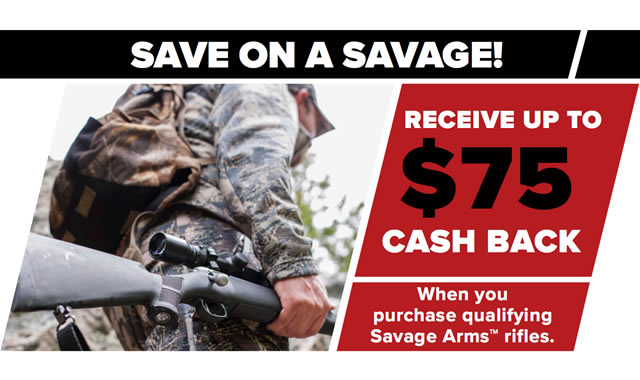Save on a Savage Fall 2016