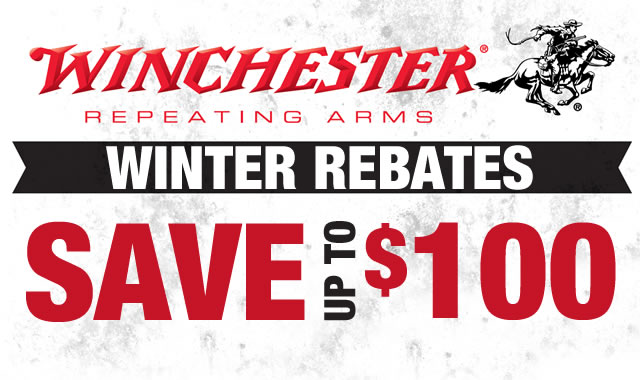 Winter Rebates
