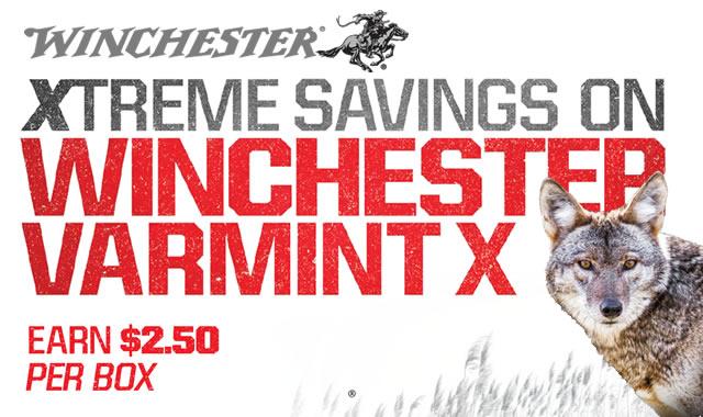 Xtreme Savings