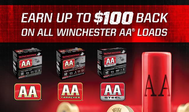 AA Cash Back Rebate