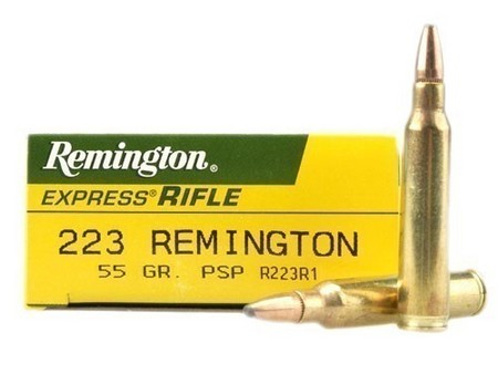223 REMINGTON 55 GR PSP R223R1