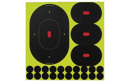BIRCHWOOD CASEY SHOOT-N-C OVAL TARGETS 9 IN. 5-PK