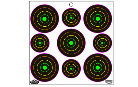 BIRCHWOOD CASEY DIRTY BIRD MULTI-COLOR TARGETS 180-PK