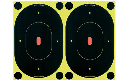 BIRCHWOOD CASEY SHOOT-N-C BULLS-EYE TARGETS 7 IN. 12-PK