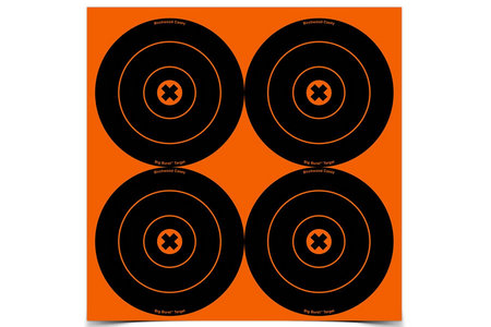 BIRCHWOOD CASEY BIG BURST TARGETS 6 IN. 12 PACK