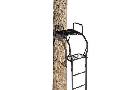 THE WARRIOR PRO LADDERSTAND