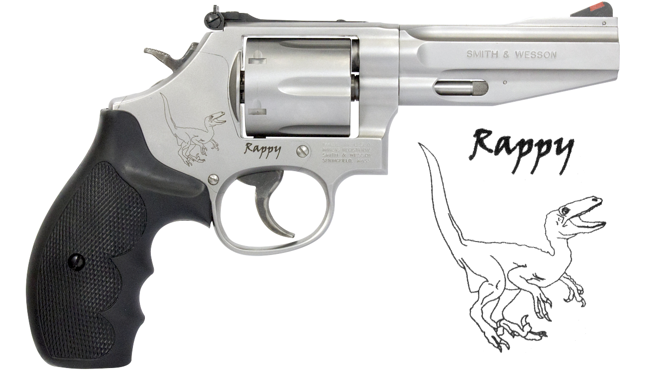 Smith & Wesson 686 Rappy SSR Pro Series 357 Magnum Revolver with 4 ...